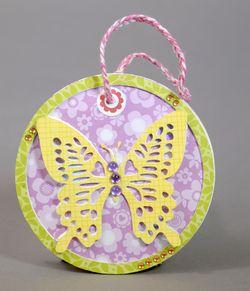 Butterfly b2